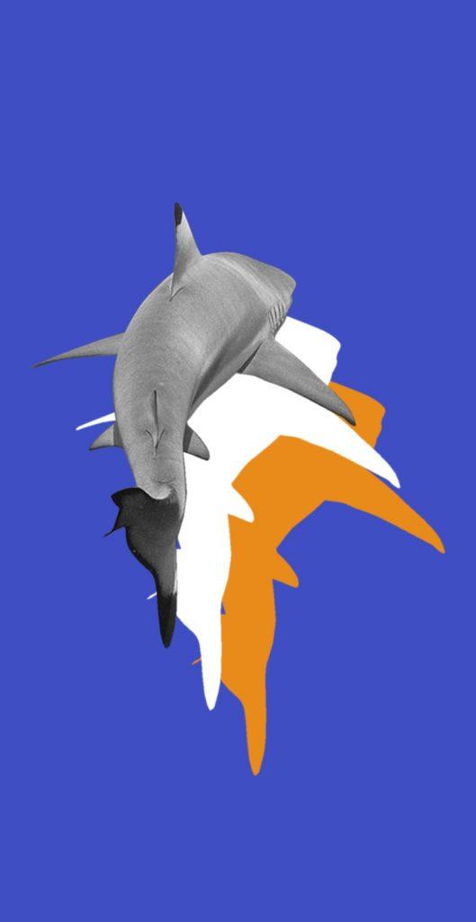 Immagine grafica simbolica riferita al servizio di Innovazione di Slowl.it